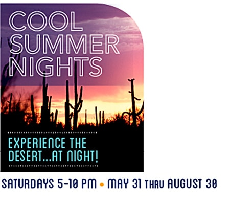 Cool Summer Nights at the Desert Museum